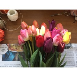 Mazzo 30 tulipani